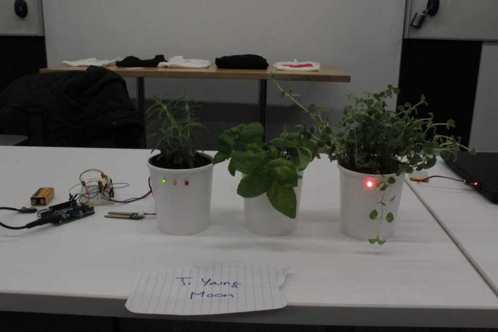 An interactive student project with plants, sensors and LEDs for output at ideation and prototyping showcase